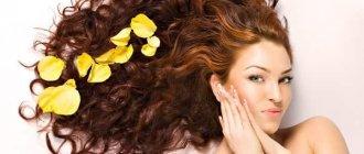 Рецепты масок по уходу за волосами