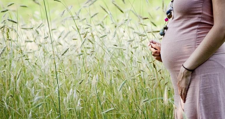 Травы при беременности: какие можно пить