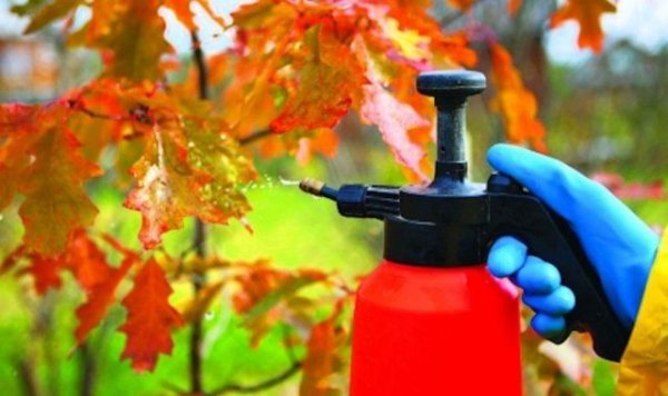 Медный купорос: применение осенью