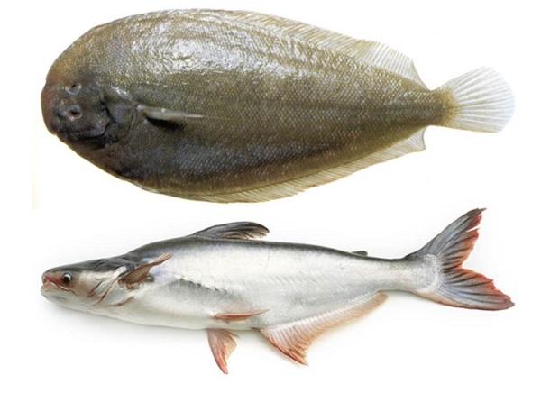 Морской язык рыба